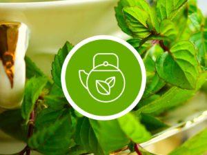Green Tea senteur AromaScent diffuseur olfactif